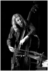 Peter Morgan, double bass player at the Polish Centre